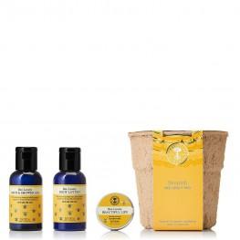 Neal's Yard Remedies Nourish Bee Lovely Trio