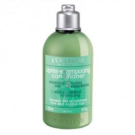 L'Occitane Volumising Conditioner for Fine & Normal Hair 250ml