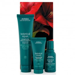 Aveda Botanical Repair™ Strengthening Hair Trio