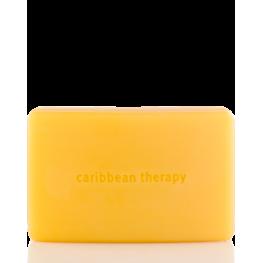 Aveda Caribbean Therapy Bath Bar